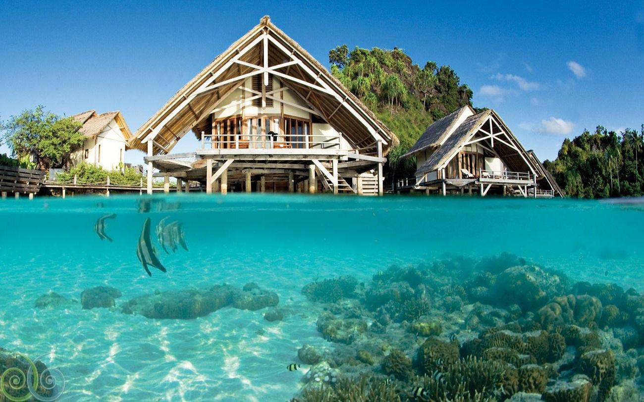 Open Trip Morotai