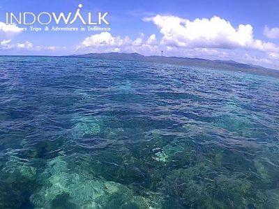 Morotai Tour Pantai Tabailenge Indowalk